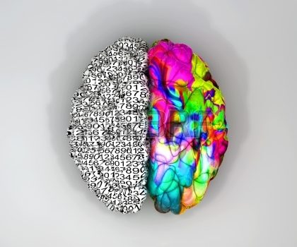 Creative Brains – Bright Managers