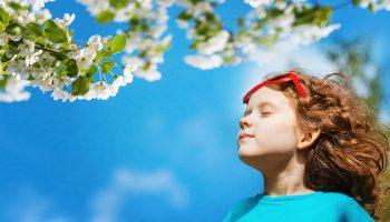 Batir un Etat d'Esprit Paisible (en Francais)